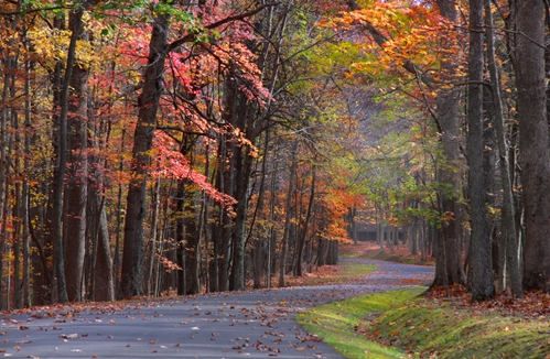4 scenic drives to experience in Virginia this fall