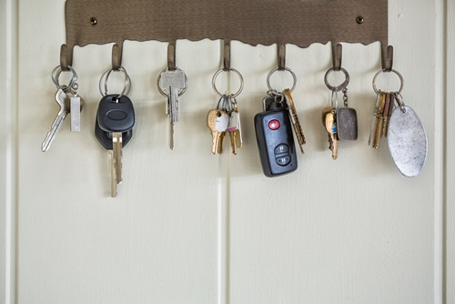 Researchers from Florida Atlantic University want to help caretakers learn when it's time for loved ones to hang up their keys to keep them safe.