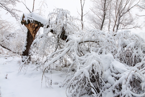 4 tips that help you outlast winter's blast